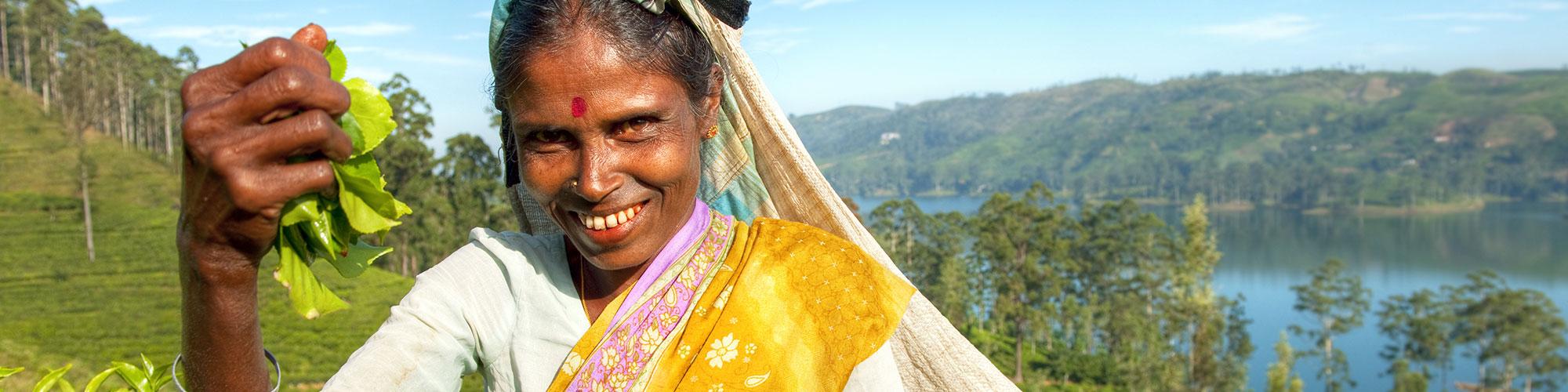 La région montagneuse du Sri Lanka