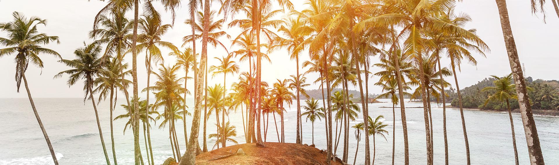 Noël au Sri Lanka avec Mai Globe Travels