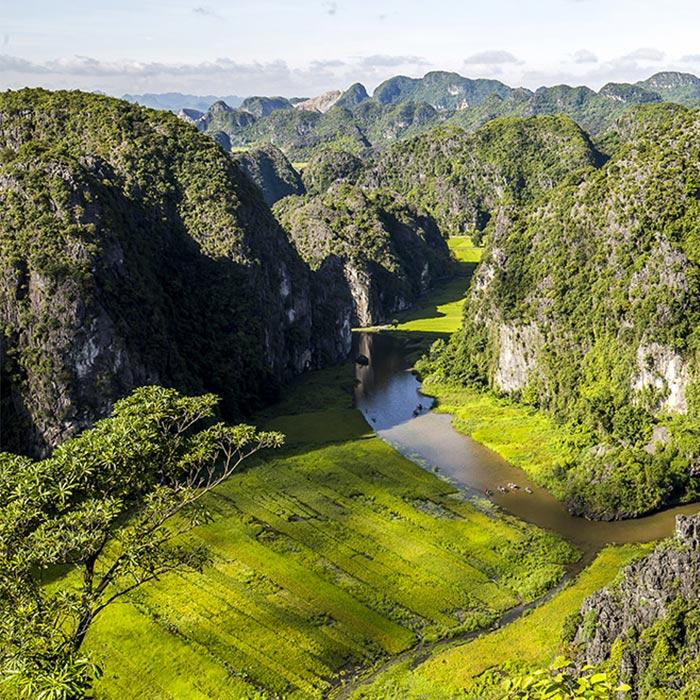 Vietnam, Ninh Binh, Rizières