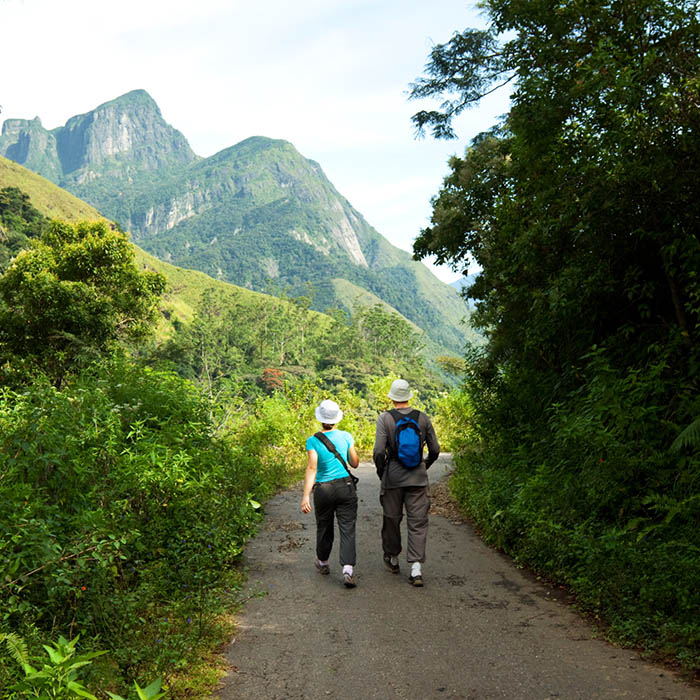 Sri Lanka, Knuckles Mountain Range, Trekking