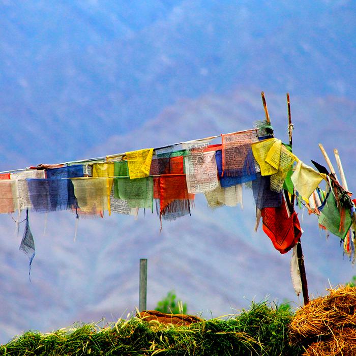 Amrita Ghanty, Leh, Ladakh, Inde