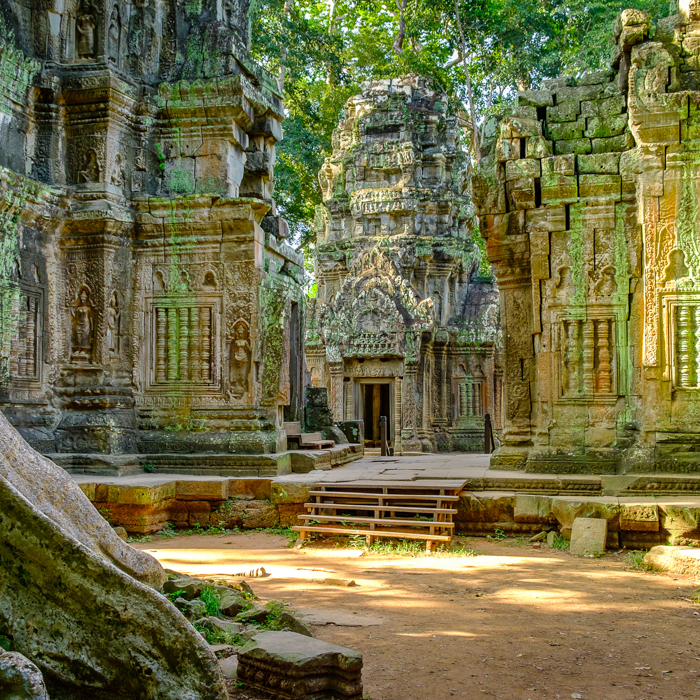 Cambodge, Temple, Angkor Ta Prohm