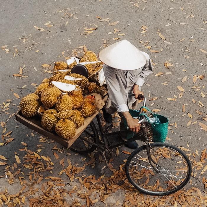 voyage sport vietnam