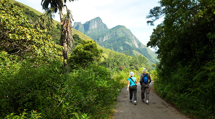 trekking-plantations-de-the-sri-lanka