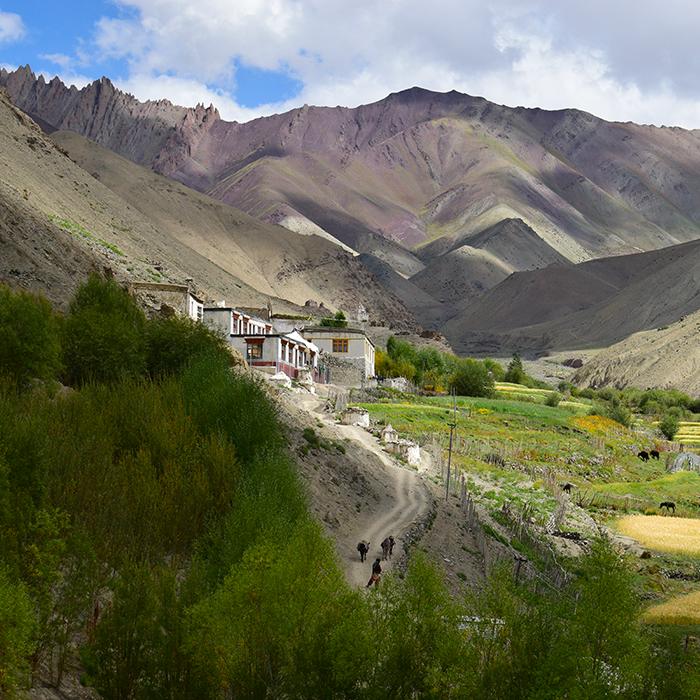 Inde, Ladakh, Rumbak, Montagnes