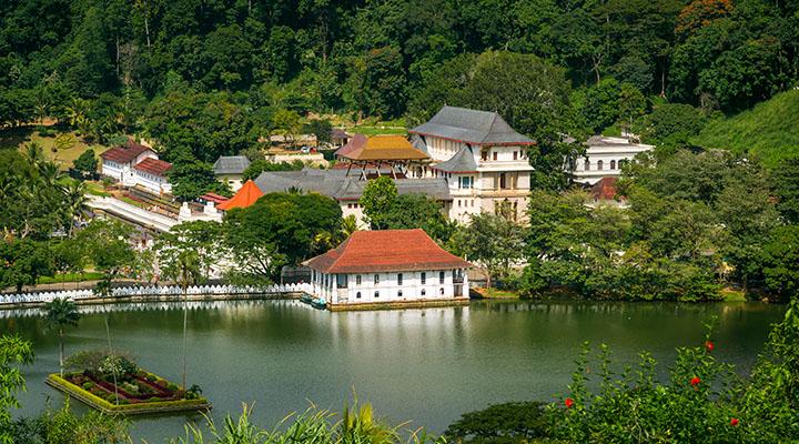 Visite de Kandy et ses alentours