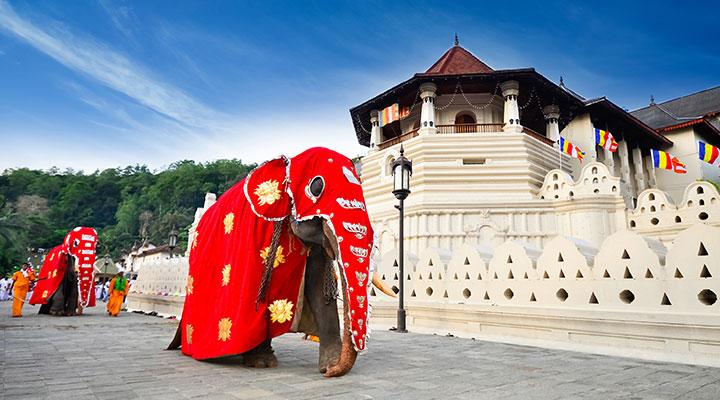 Visite de Kandy et de ses alentours