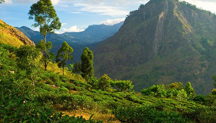 Little Adams Peak, Sri Lanka