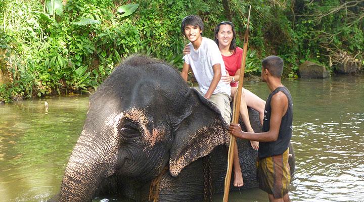 elephant-millenium-elephant-orphanage