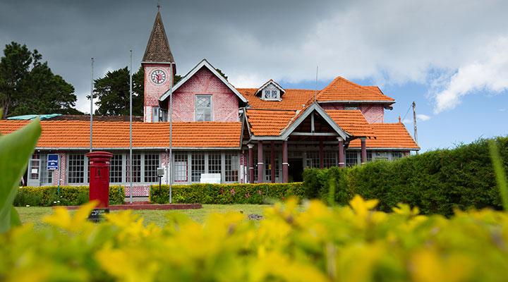 Balade dans les plantations de thé a Nuwara Eliya