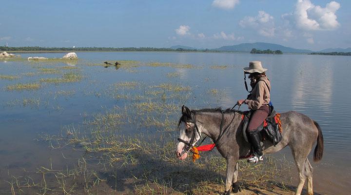 Journée a cheval au milieu de la faune