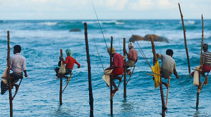 Pêcheurs sur échasses au Sri Lanka