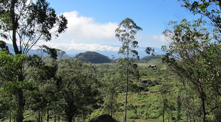 Région montagneuse du Sri Lanka