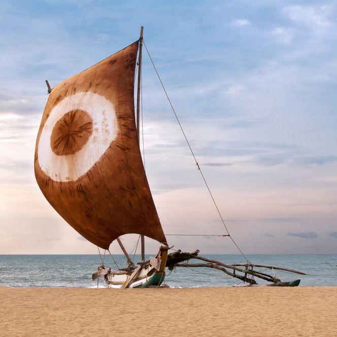 voyage sri lanka nature culture