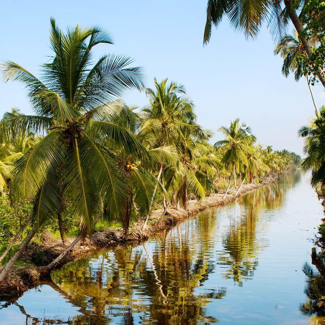 Marais de Muthurajawel, Negombo, Sri Lanka