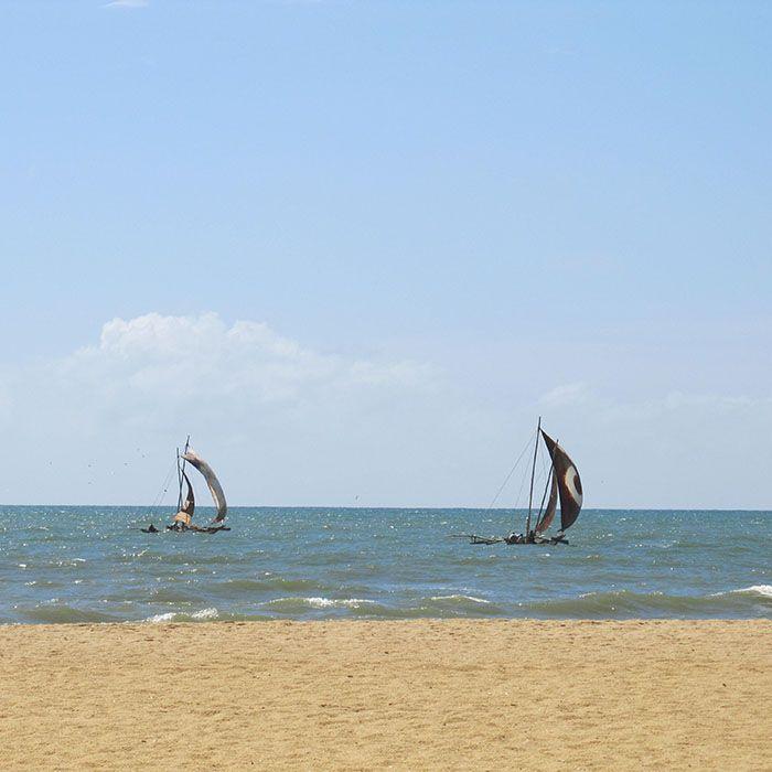 Sri Lanka, Balade, Catamaran, Negombo