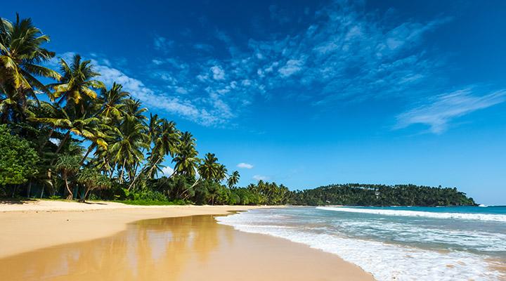 Plage du Sri Lanka