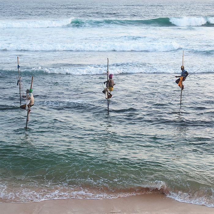 Pêcheurs, Côte Sud, Sri Lanka
