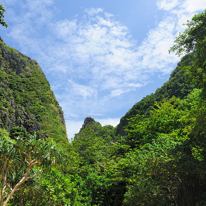 Trekking, Koh Chang, Thaïlande
