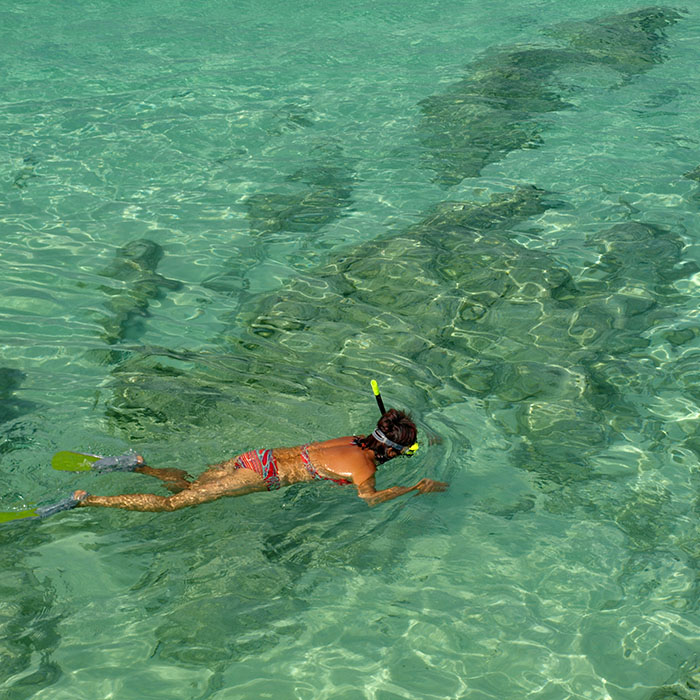 Snorkeling, Islands, Thaïlande