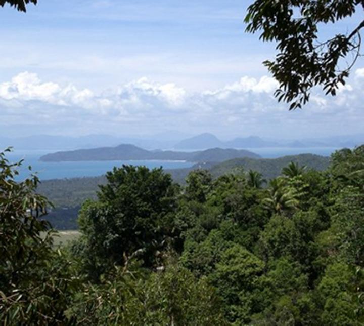 Thaïlande, Koh Samui, Randonnées