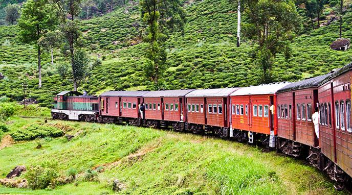 Train pour Nanu Oya, Sri Lanka