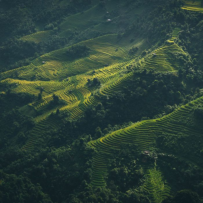 Trek, Nam Hong, Panhou, Vietnam