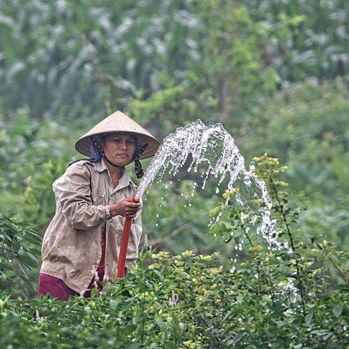 Trek, Nam Ai, Nam Hong, Vietnam