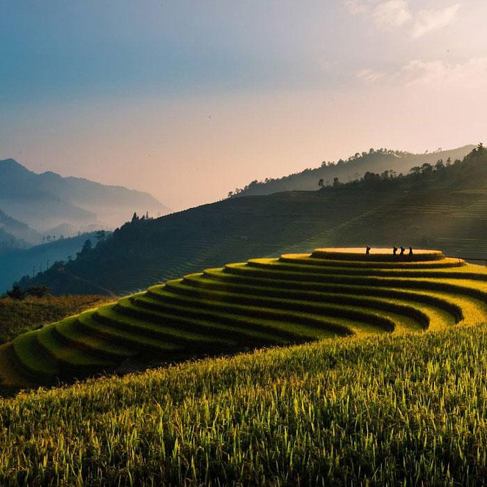Vietnam, Tu Le