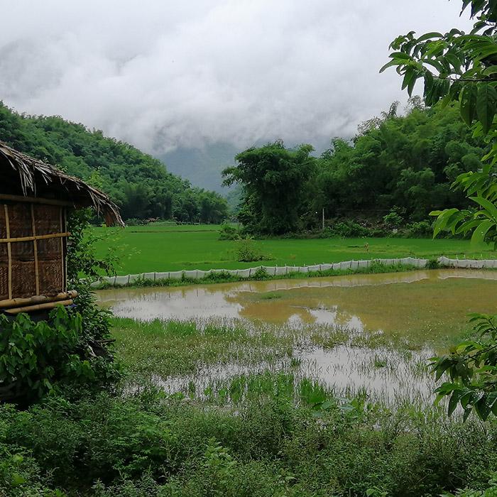 Vietnam, Mai Chau, vallée