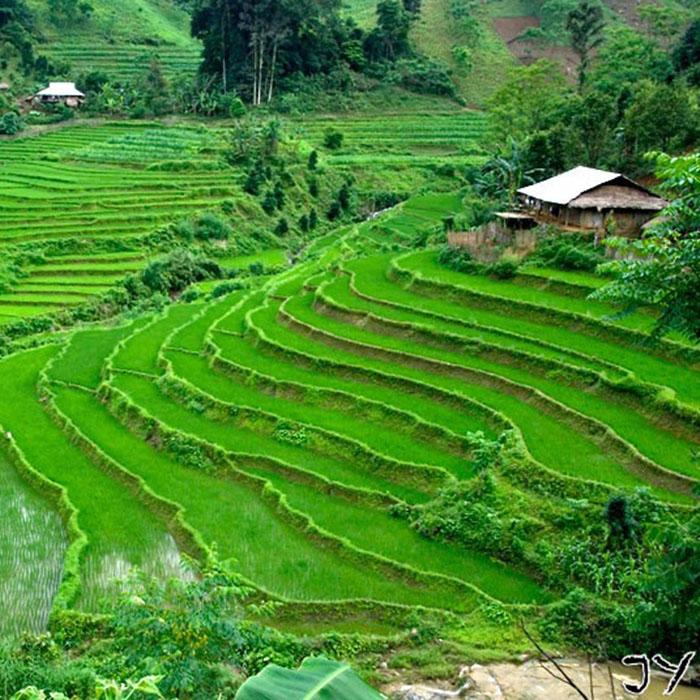 Vallée de Pu Luong, Vietnam