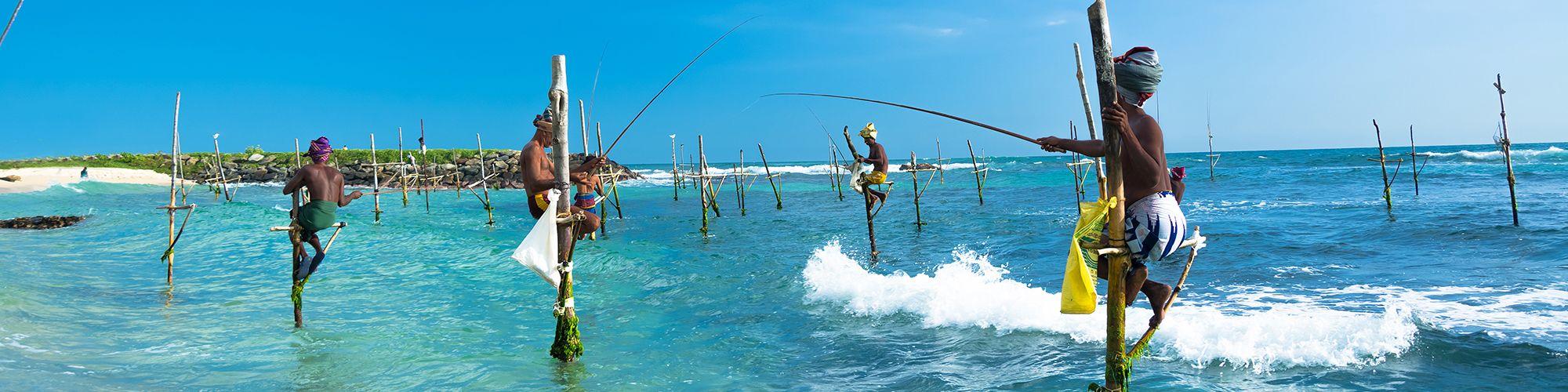 Excursions & activités au Sri Lanka