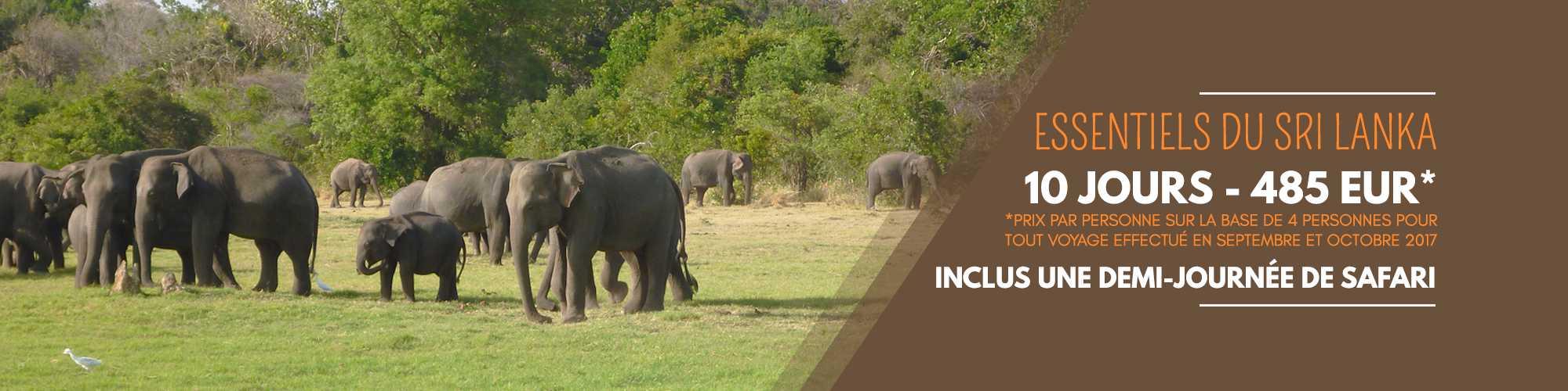 Circuits nature et vie sauvage au Sri Lanka