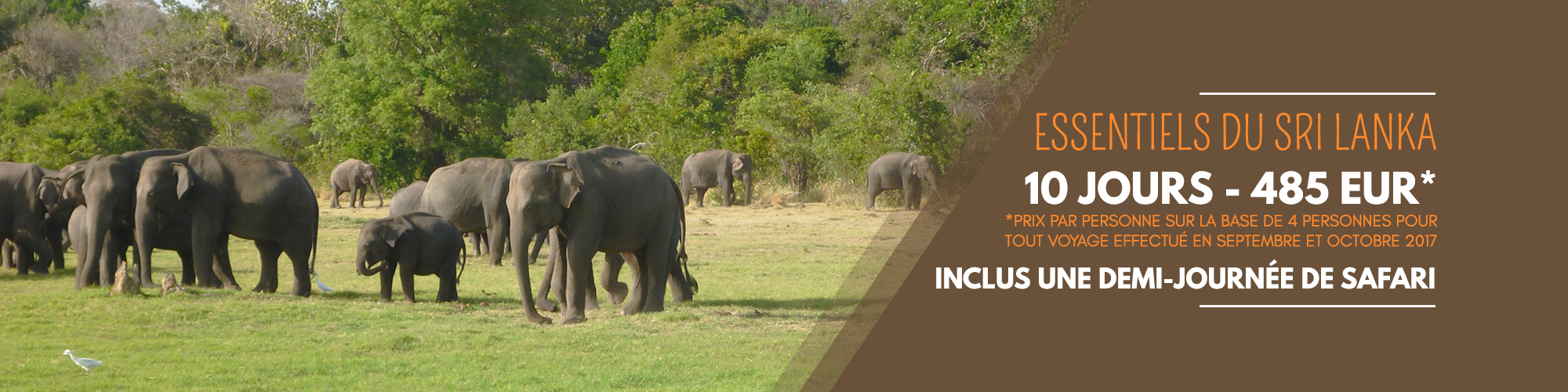 Bons plans voyage au Sri Lanka