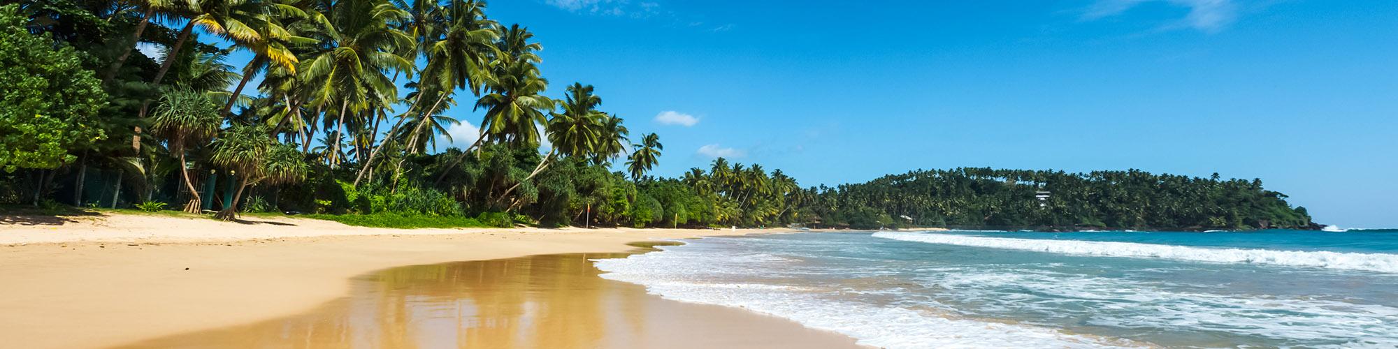 Circuits plage et détente au Sri Lanka