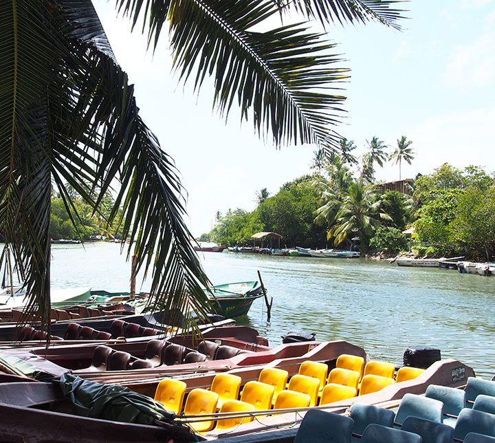 Sri Lanka, Bâteau, Rivière Madu Ganga