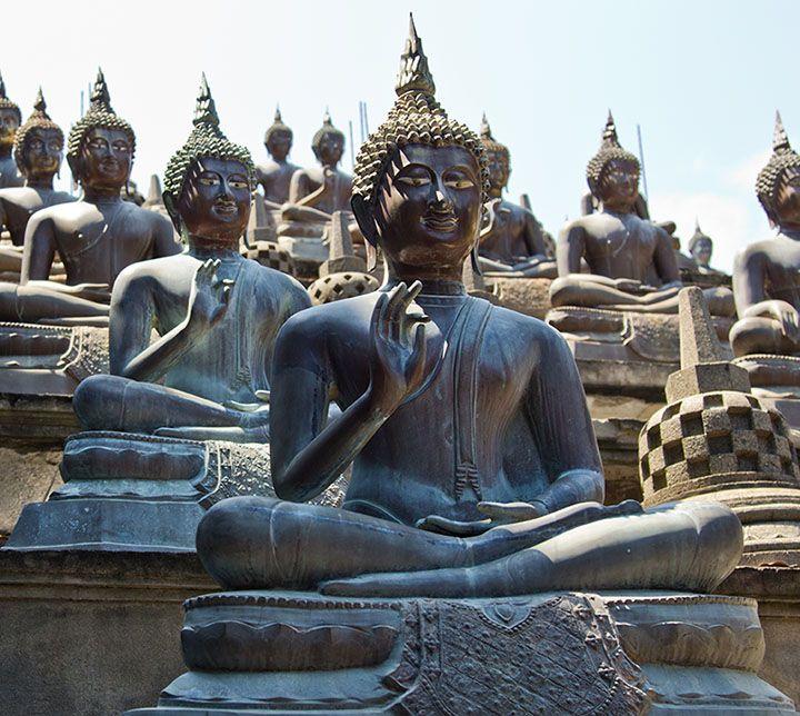 Sri Lanka, Colombo, Statues, Bouddha
