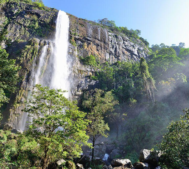 Sri Lanka, Cascade, Bambarakanda, trek