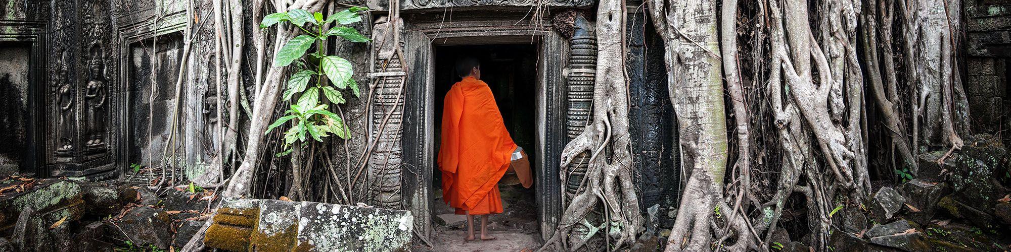 Cambodge, Moine, Angkor Ta Prohm