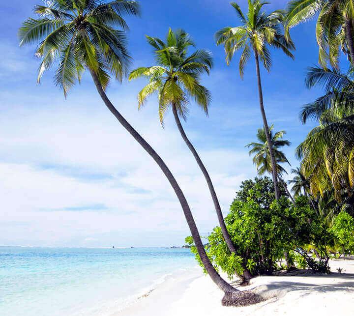 Plage, Maldives