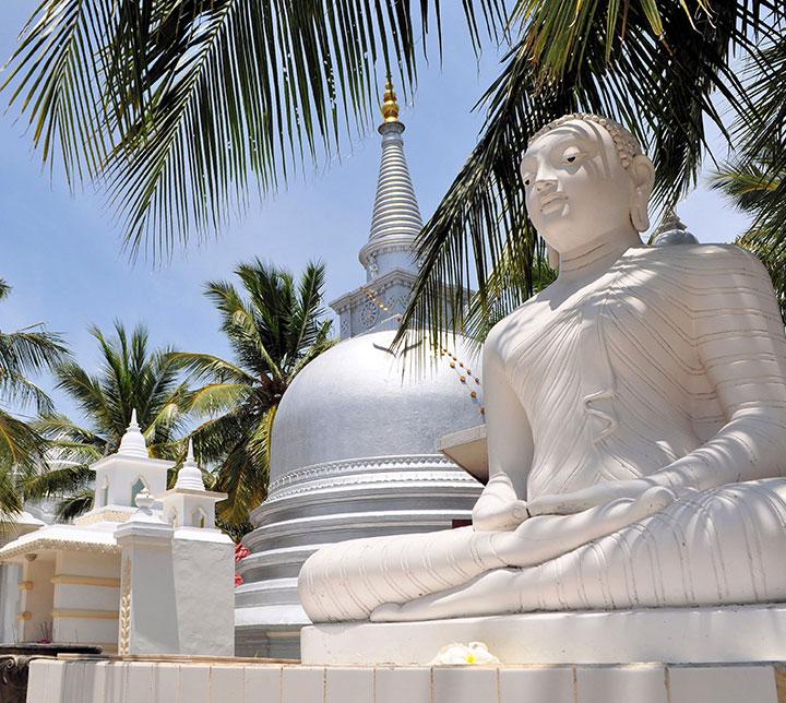 Circuit découverte du Nord du Sri Lanka