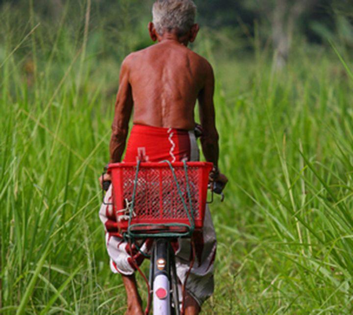 Homme, vélo, Sri Lanka