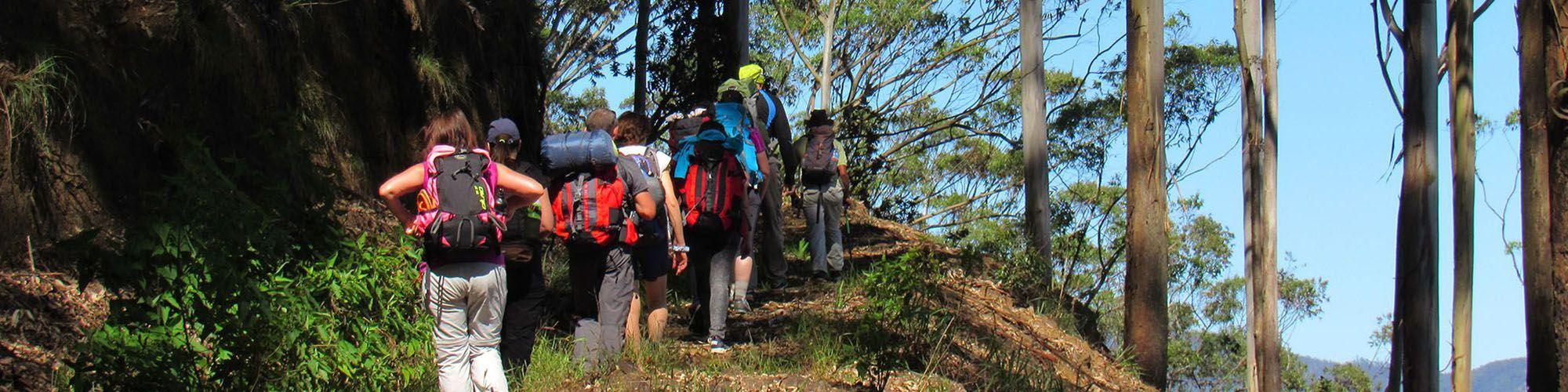 Sri Lanka, Trekking, Kitulgala, Vue