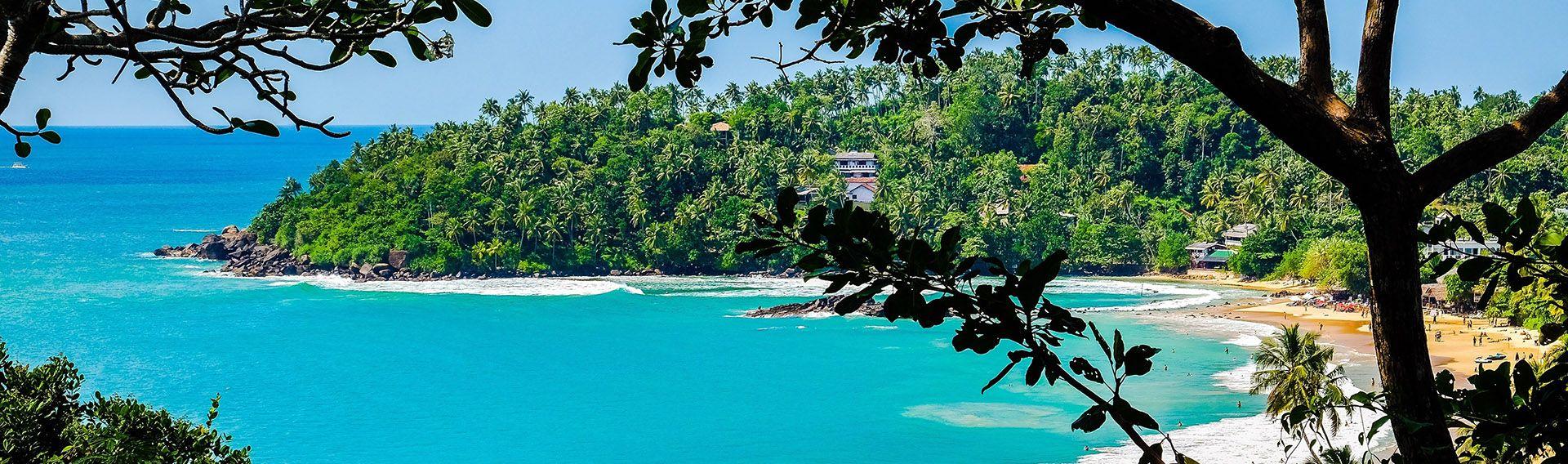 Baie de Mirissa, côte Surd, Sri Lanka