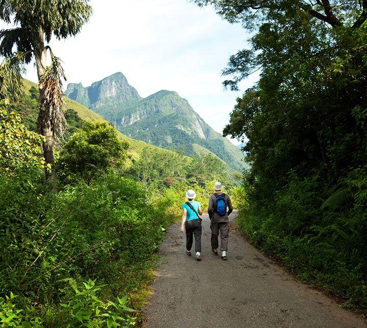 Sri Lanka, Forêts, Randonnée guidée