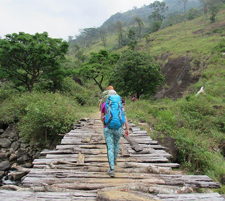 Sri Lanka, Knuckles Range, Trek