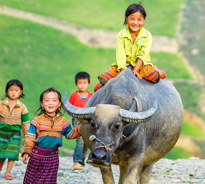Vietnam, Enfants, Sapa, Ethnies Hmong
