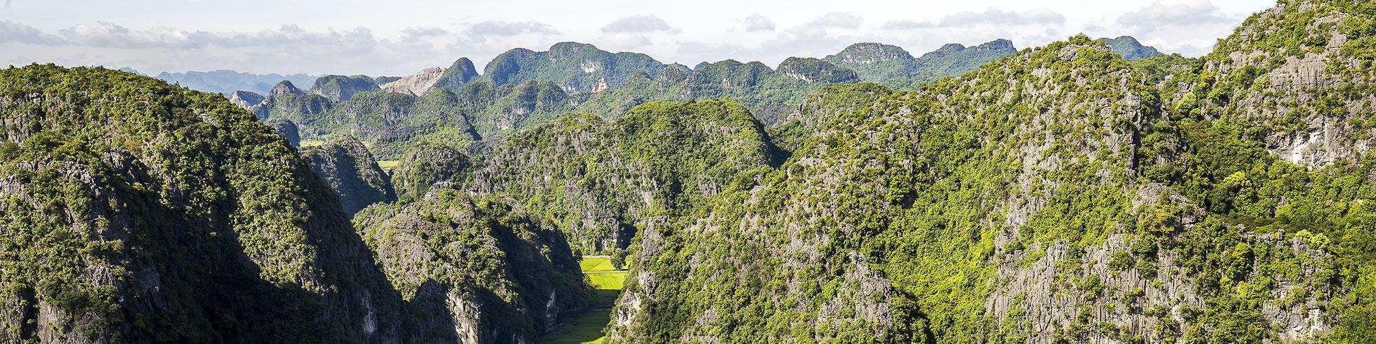 Vietnam, Ninh Binh, Rizière