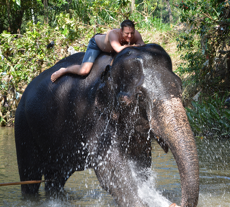 bain-avec-un-elephant
