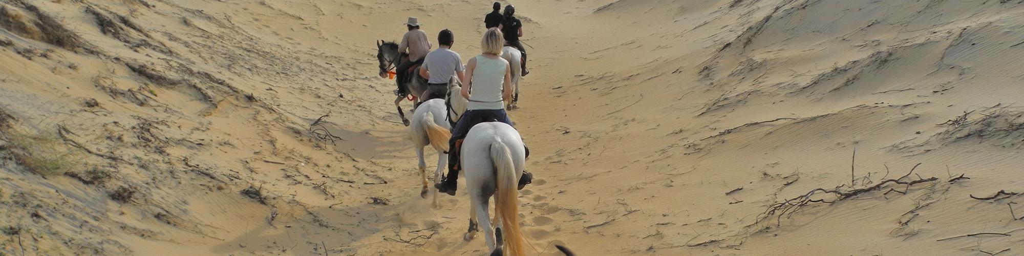Circuit à cheval au Sri Lanka